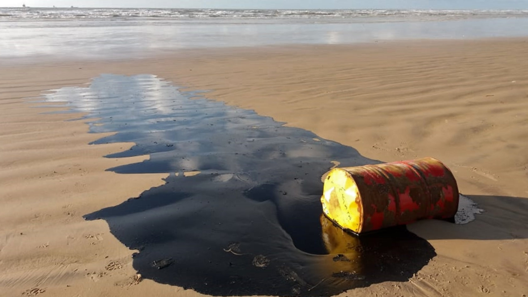 Using Microbes to Improve Spill Cleanup